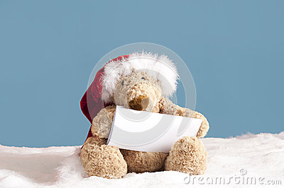 Xmas teddy bear with card