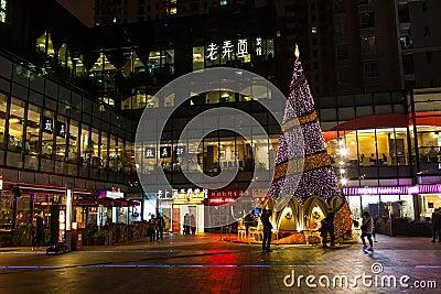 Xmas tree Editorial Stock Photo