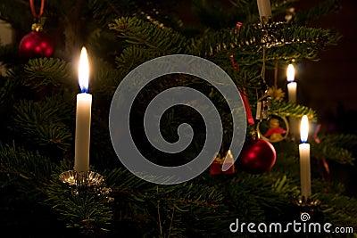 Xmas Tree Candle