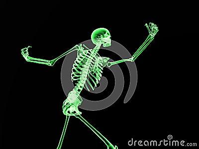 Xray Bone 2