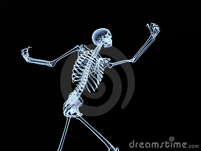 Xray Bone