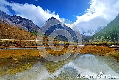 Ya Ding natural reserve