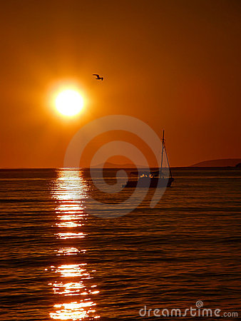 Free Yacht And Bird At Sunset Stock Image - 21694591