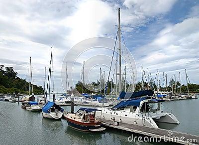 Yacht Club 02