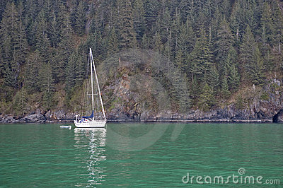 Yacht and forested coast