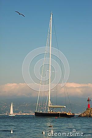 Yacht in Portofino bay.
