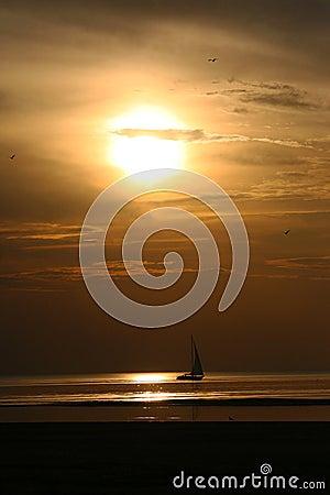 Free Yacht Sailing At Sunset Stock Photos - 45439063