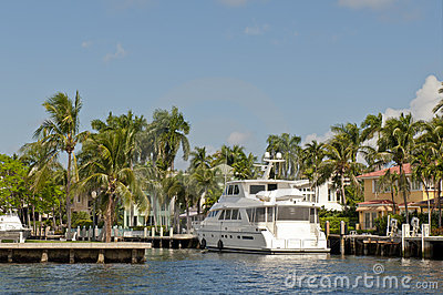 Yacht in water and palm trees
