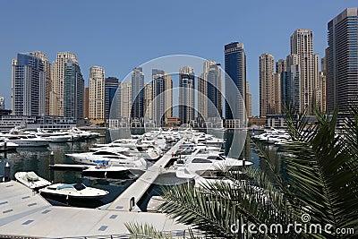 Yachts at Dubai Marina