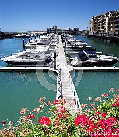 Yachts at Glenelg Marina Pier