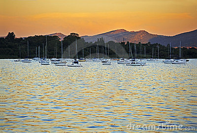 Yachts moored at sunset