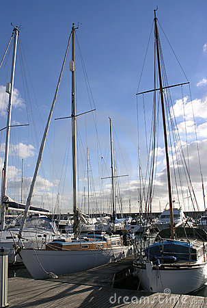 Yachts in mooring