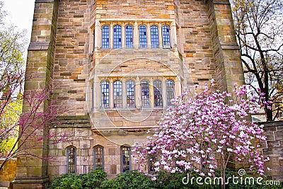Yale University Victorian Building Magnolia