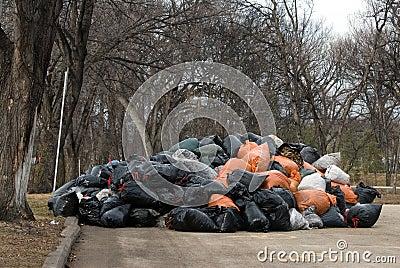 Yard Waste Drop Off Site