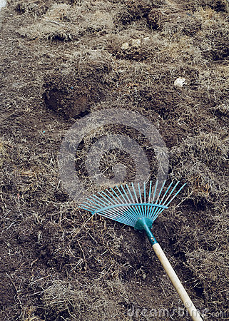 Yard work preparation soil in garden with rake stock photo image 64063760 - Gardening works in october winter preparations ...
