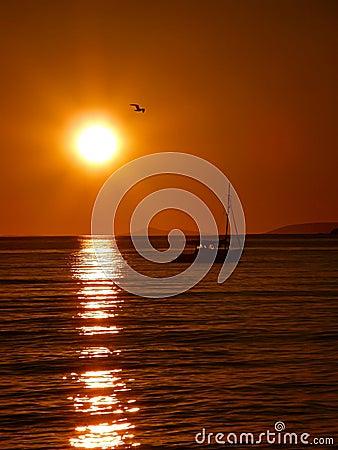 Yate y pájaro en la puesta del sol