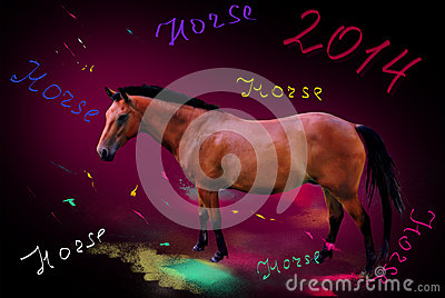 Year of a horse