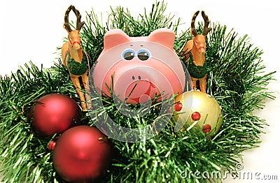 Year a pig
