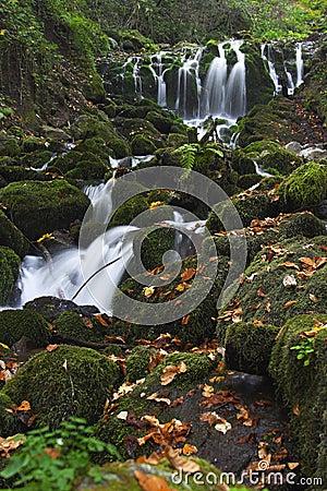 Yedigoller Falls III