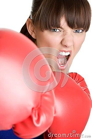 Yelling Boxer