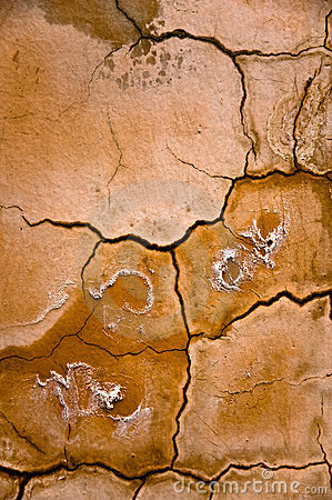 YelloScorched earth abstract background.