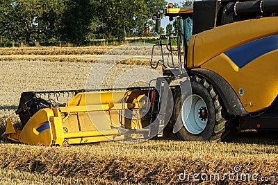 Yellov combine on field harvesting gold wheat