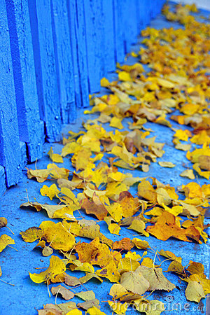 Free Yellow And Blue Royalty Free Stock Photos - 3559668