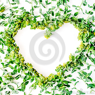 Free Yellow And Green Floral Wreath Frame Heart With Branches, Leaves Stock Photo - 72264680