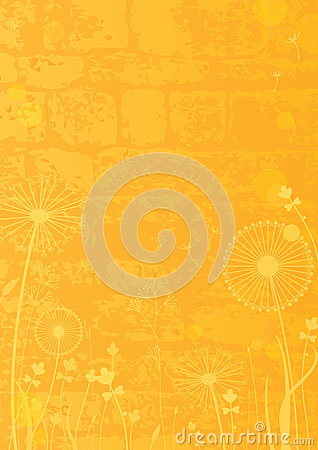 Yellow background with dandelions
