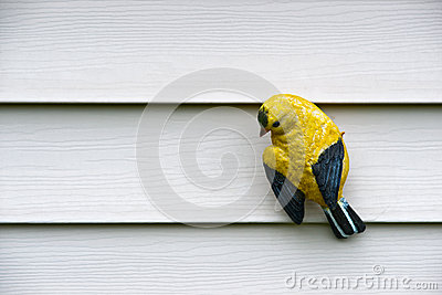Yellow Bird Carving on Wall