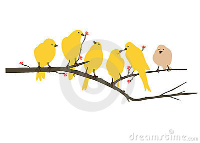 Yellow Bird Decal artwork