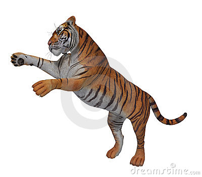 yellow black striped pouncing tiger 300 dpi