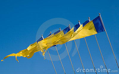Yellow & Blue flags