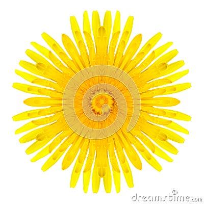 Free Yellow Concentric Dandelion Flower Isolated On White. Mandala Design Royalty Free Stock Image - 35480836