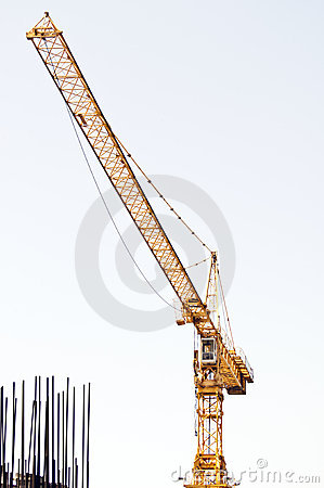 Yellow crane and armature