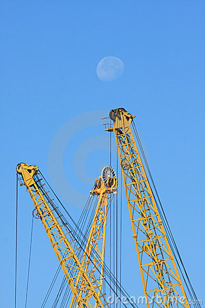 Yellow cranes and blue sky