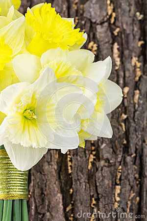 Free Yellow Daffodil Bridal Bouquet Stock Image - 38696251