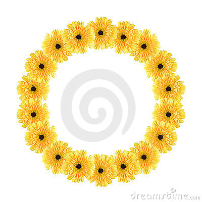 Yellow daisy circle frame