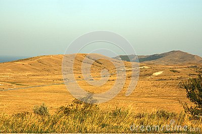 Yellow dry grass field, blue sea and sky.