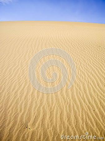 Yellow Dunes on blue sky