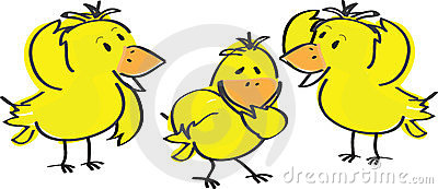 Yellow Easter chicks