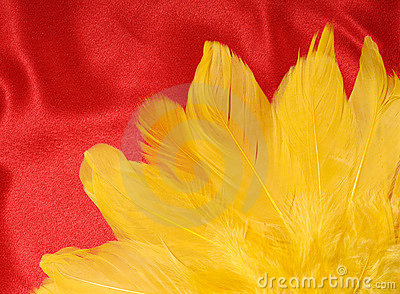 Yellow Feathers on Red