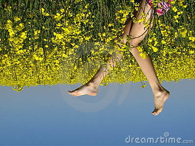 Yellow field with girl s legs