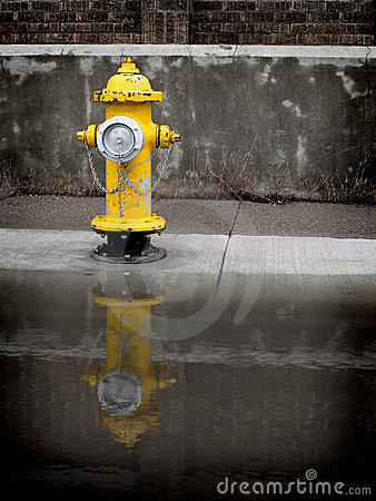 Free Yellow Fire Hydrant Stock Photo - 9791010