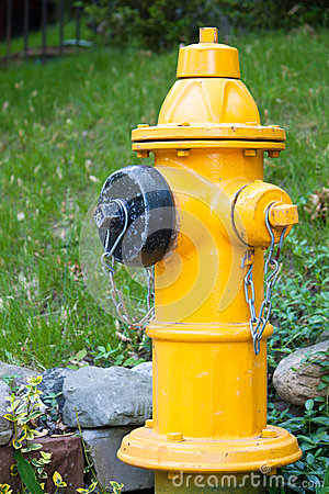 Yellow Fire Hydrant in Toronto