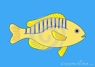 Yellow Fish With Blue and Red Stripes