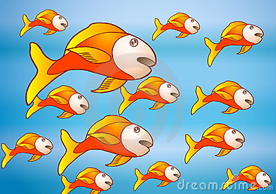 The yellow fish group