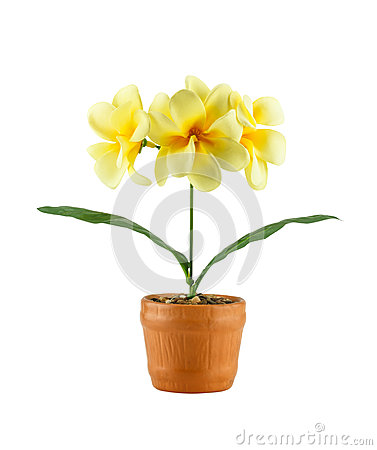 Yellow frangipani flower ( Artificial flowers made from cloth) i