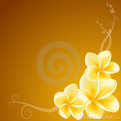 Free Yellow Frangipani Flowers Royalty Free Stock Photography - 4164757