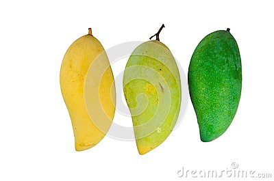 Yellow and green mango on white